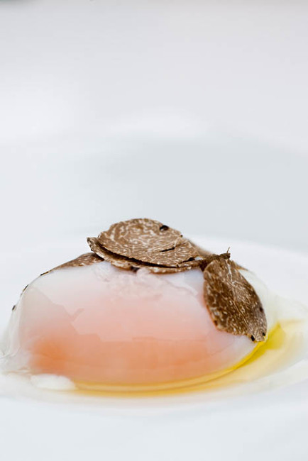 Stefano Scatà Food Lifestyle and Interiors photographer  Egg