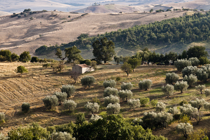 Stefano Scatà Food Lifestyle and Interiors photographer  Basilicata journey