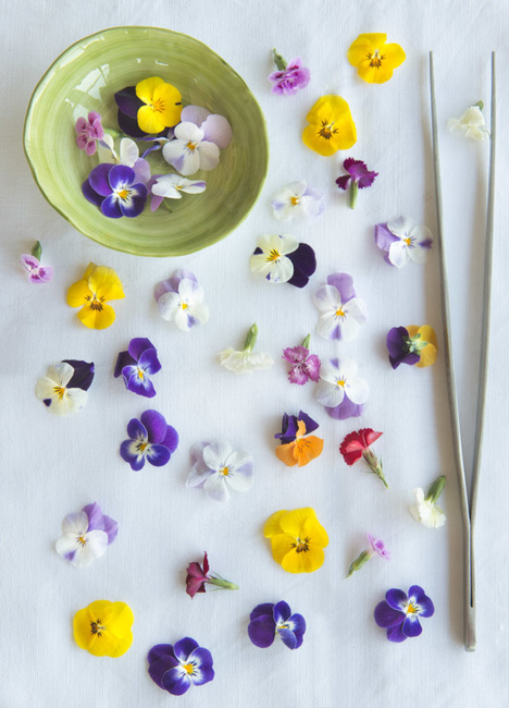 Stefano Scatà Food Lifestyle and Interiors photographer  Cakes with edible flowers and berries