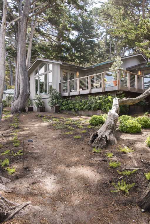 Stefano Scatà Food Lifestyle and Interiors photographer  Valera Lyle's house in Carmel by the sea